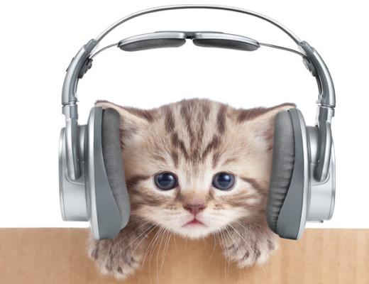 chatmusique